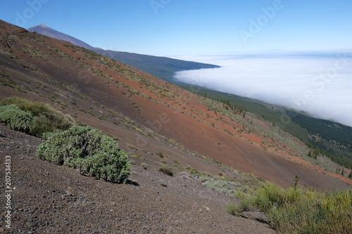 Fotobehang Cappuccino Teide NP - Tenerife