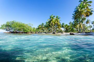 Lebensfreude, Ferien, Tourismus, Sommer, Sonne, Strand, Meer, Glück, Entspannung, Meditation: Traumurlaub an einem einsamen, karibischen Strand :) Nachricht an den