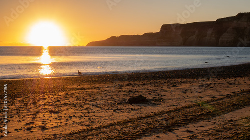 Fotobehang Diepbruine Beautiful beach sunrise shot during coastal hike to Cape Kidnappers located in Hawke´s bay, North Island area of New Zealand