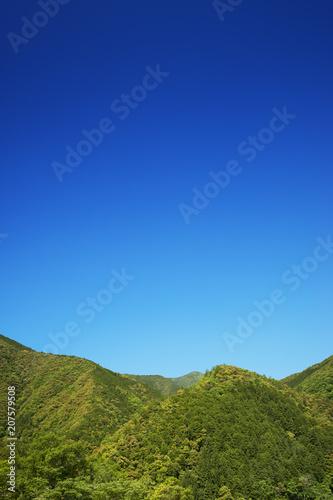 新緑の山と青空