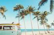 @ Tropical Look