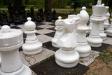 summer vacation travel sun nature game chess Park