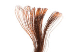 copper wire isolated - 207604146