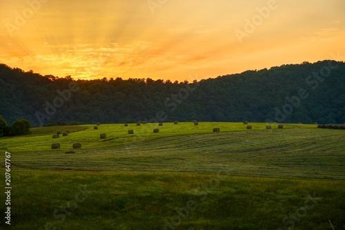 Fotobehang Lente Sunrise On The Farm