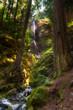 Small BC Waterfall
