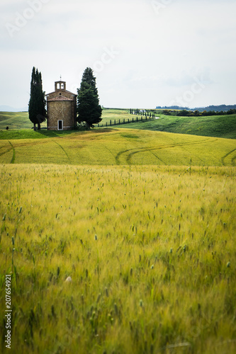 Canvas Honing Tuscany landscape with a little chapel of Madonna di Vitaleta, San Quirico d'Orcia, Italy
