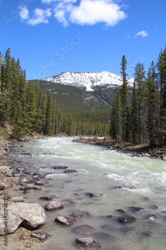 Fotobehang Bergrivier Stones In The Sunwapta River, Jasper National Park, Alberta