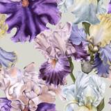 Background with iris. Seamless pattern.