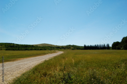 Fotobehang Blauw steppe
