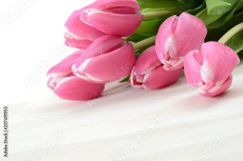 Leinwanddruck Bild Tulpen