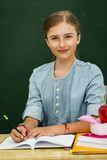 Beatiful smiling pupil in classroom at the elementary school, back to school. - 207705319