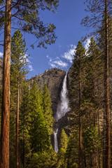 Yosemite National Park's Yosemite Falls © Andrew S.