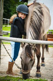 Young horse riding girl, equestrian sport . Horseback girl on field. - 207707117