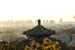 View from Jingshan park, Beijing