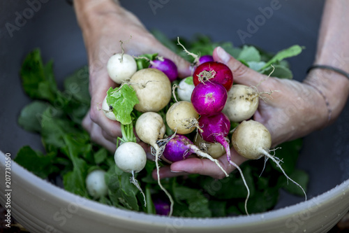 Woman is washing fresh organic radish - 207730550