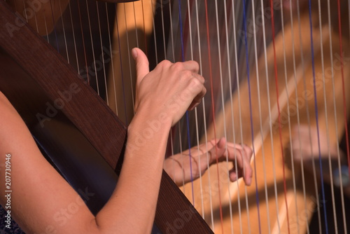 Handhaltung Harfe © igeltier