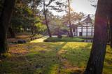 Pavillion in Nara park, Japan