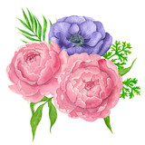 Watercolor bouquet of anemone and peony flowers isolated on white background. Element for design. - 207744587