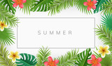 Summer frame with exotic flowers and palm leaves. Vector illustration for tropical frames and backgrounds - 207752586