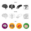 Brain, kidney, blood vessel, skin. Organs set collection icons in black,flat,outline style vector symbol stock illustration web.
