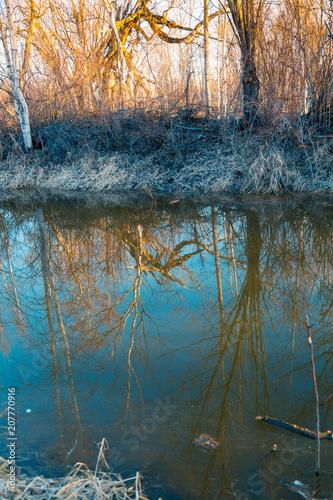 Fotobehang Groen blauw In the morning on the river