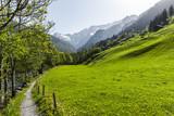 Wanderweg - 207771539