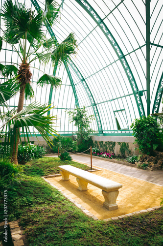 Beautiful greenhouse full of green fresh plants and ferns