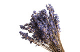 dry lavender isolated - 207777348