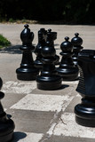 Chess and mat. Black chess pieces in the park