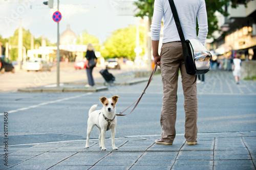 Leinwanddruck Bild Mann mit Hund in der Stadt
