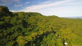 Aerial view of Raiatea island, green hills and mountains covered by lush vegetation of rain forest - South Pacific Ocean, landscape of French Polynesia from above - 207786392