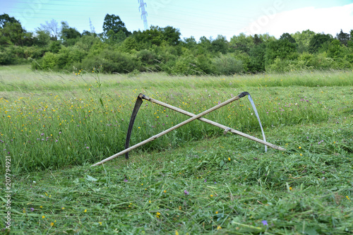Fotobehang Olijf tradition scythe on mowing the green meadow