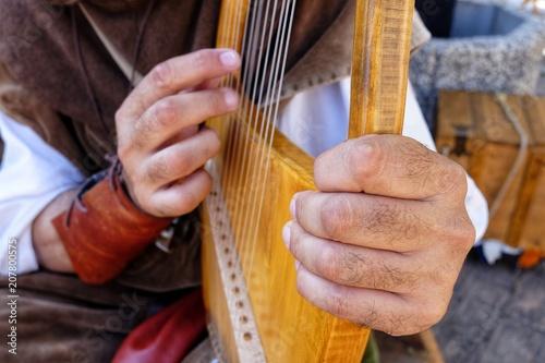 lyre medieval musical instrument - 207800575