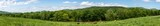 Panoramic view of a country land with beef herd near a river