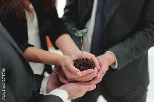 Leinwanddruck Bild Male and female business partners nurturing a new plant