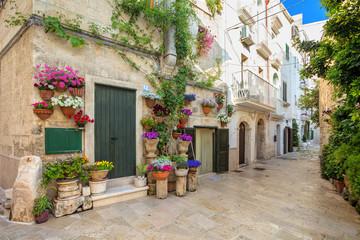 Scenic sight in Monopoli, Bari Province, Apulia, southern Italy. © Vladimir Sazonov