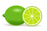 Vector illustration of fresh lime isolated on white background.