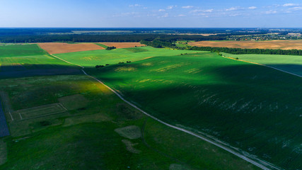 the green field is at sunset shot with the drone © Ruslan Ivantsov