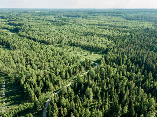 Plexiglas Zwart drone image. gravel road surrounded by pine forest from above