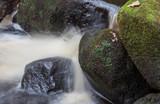 Padley Gorge. - 207890388