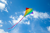 Kite flying in the sky among the clouds - 207890792