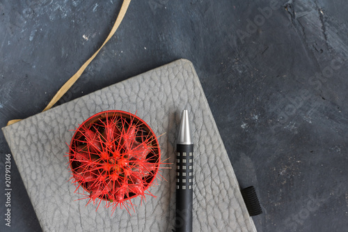 red, cactus, grey, black, Office, notebook, background, top view, business, desk. pen,  life style,