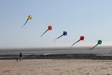 Cerf-volant à la plage - 207918756