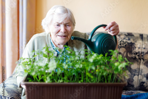 Leinwanddruck Bild Senior woman of 90 years watering parsley plants with water can at home
