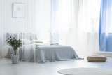 Pouf and plant near canopy bed in simple white and blue bedroom interior with rug. Real photo