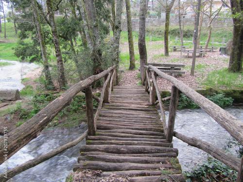 Fotobehang Weg in bos Caminho
