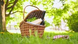 Wicker picnic basket with cheese and wine on red checkered table cloth on grass in park - 207942179