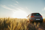 Car in the field in summer sunset - 207944392