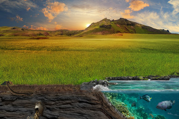 Section of soil and sea. A picturesque green lawn in the rays of the evening sun.