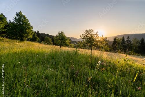 Fotobehang Zonsopgang Sonnenaufgang auf dem Kupferberg